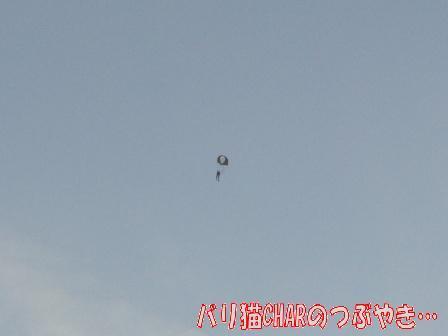 ブログ20100830-4.JPG