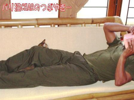ブログ20100926-2.JPG