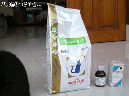 ブログ20110727-5.JPG