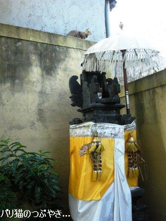 ブログ20110827-2.JPG