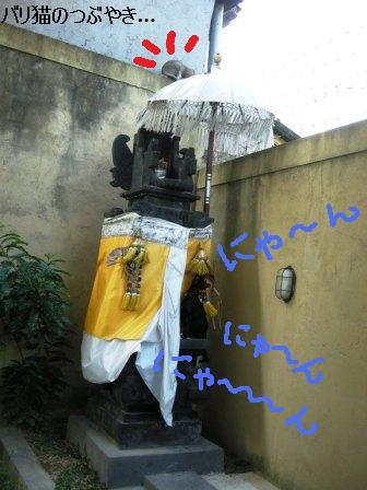 ブログ20110827-7.JPG