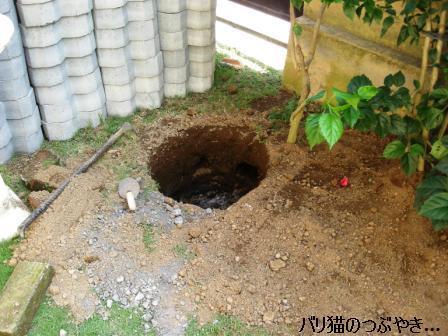 ブログ20110828-4.JPG