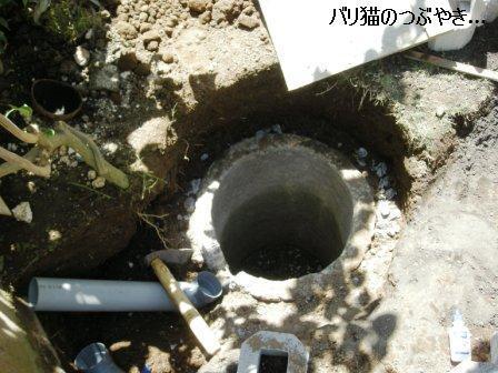ブログ20110828-6.JPG
