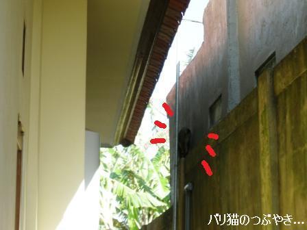 ブログ20110904-3.JPG