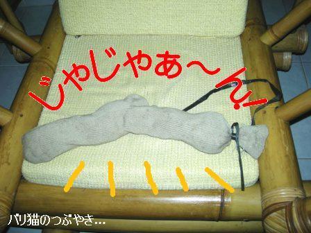 ブログ20110906-2.JPG
