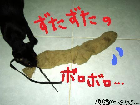 ブログ20110906-3.JPG
