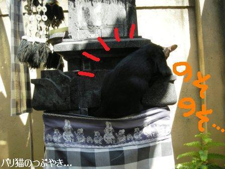 ブログ20110907-10.JPG