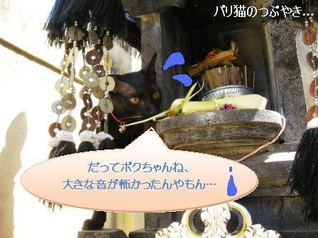 ブログ20110907-11.JPG