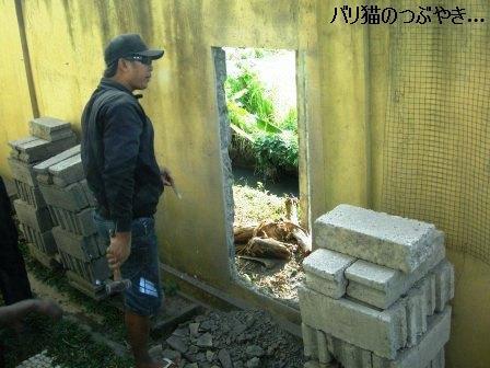 ブログ20110907-4.JPG