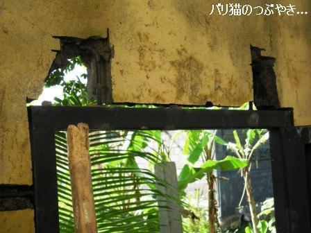 ブログ20110907-7.JPG