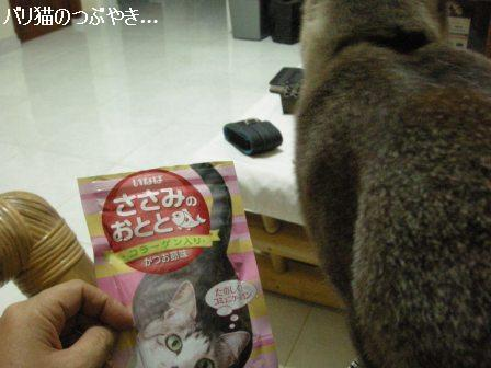 ブログ20110913-3.JPG