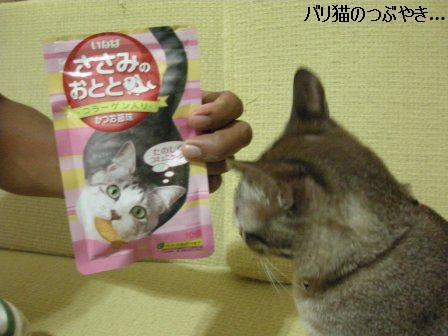 ブログ20110913-4.JPG