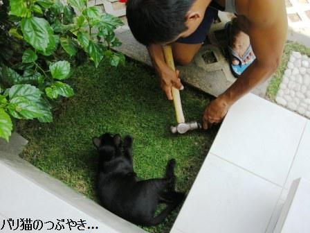 ブログ20110922-2.JPG