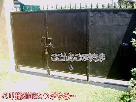 ブログ20100829-7.JPG