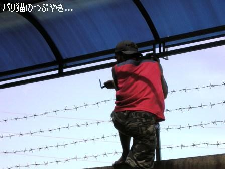 ブログ20110430-7.JPG