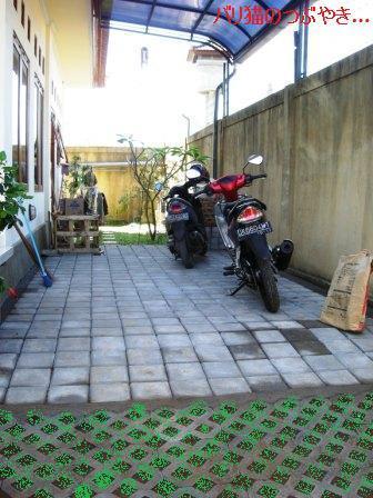 ブログ20110828-17.JPG
